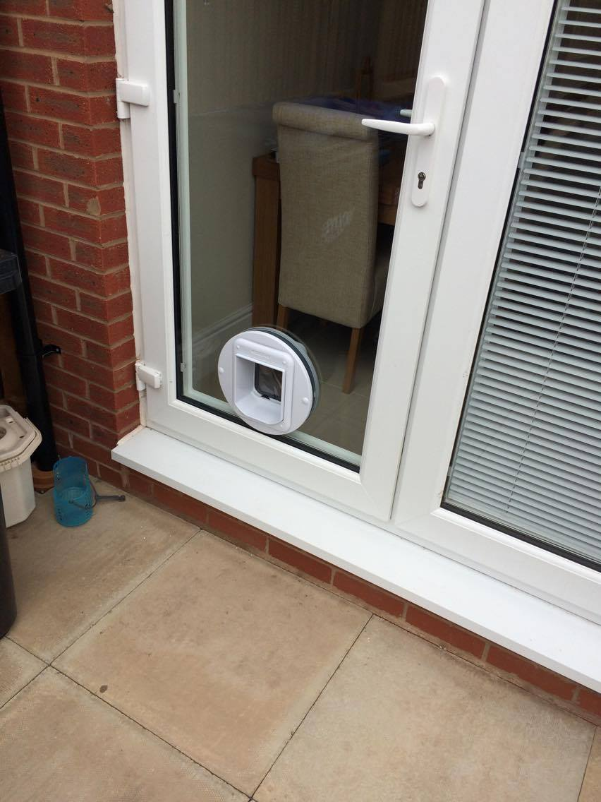 Cat Flap In A Double Glazed Door Window Repair Solutions